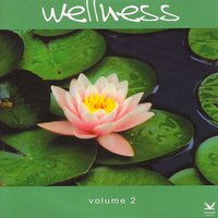 Wellness Vol.2: A Beautiful Journey to Inner Relaxation — сборник
