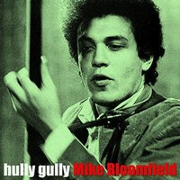 Hully Gully — Michael B. Bloomfield