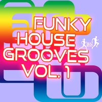 Funky House Grooves, Vol. 1 — сборник