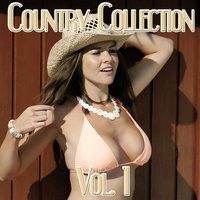 Country Collection, Vol.1 - Johnny Cash — Johnny Cash