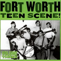 Fort Worth Teen Scene!, Vol. 3 — сборник