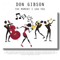 The Moment I Saw You — Don Gibson