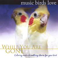 Music Birds Love: While You Are Gone — Bradley Joseph