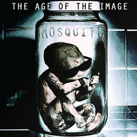 The Age of the Image — Mosquito