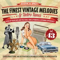 The Finest Vintage Melodies & Retro Tunes Vol. 43 — сборник