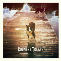 Country Treats — The Jenkins Brothers