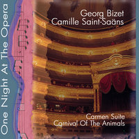 One Night At The Opera: Bizet; Carmen Suite & Camille Saint-Saens; Carnival Of The Animals (Karneval der Tiere) — Münchner Symphonisches Orchester, Nürnberger Symphoniker, Жорж Бизе, Камиль Сен-Санс
