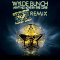 Ain't No Love In The Club — Wylde Bunch