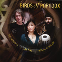 Birds of Paradox — Birds of Paradox