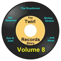 Twirl Records Story Volume 8 — сборник