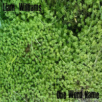 One Word Name — Liam Williams
