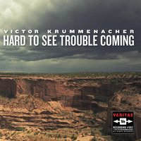 Hard to See Trouble Coming — Victor Krummenacher
