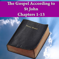 The Gospel According to St John Chapters 1-13 — Sam Stinsen
