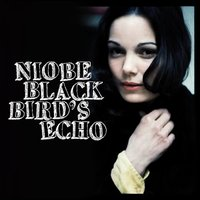 Blackbird's Echo — Niobe