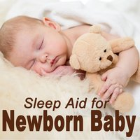 Sleep Aid for Newborn Baby — Baby Geniuses