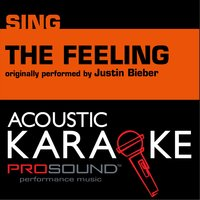 The Feeling - A Country Tribute to Justin Bieber — Karaoke