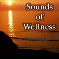 Sounds Of Wellness — Ivo Moring, Ivo Moring, Fenna Fee, Fenna Fee