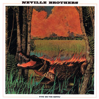 Fiyo On The Bayou — The Neville Brothers