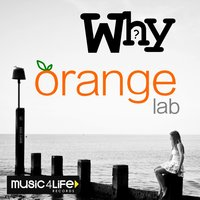 Why — Orange Lab