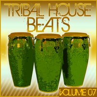 Tribal House Beats, Vol. 07 — сборник