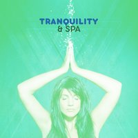 Tranquility & Spa — Spa