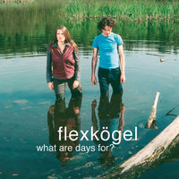 What Are Days For? — Flexkögel