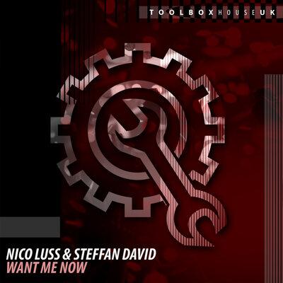 Nico Luss, Steffan David - Want Me Now (Original Mix) [2021]