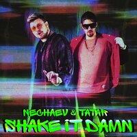 NECHAEV, TATAR - Shake It Damn