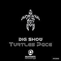 Turtle's Pace — Big Show