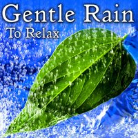 Gentle Rain to Relax — Nature Lounge