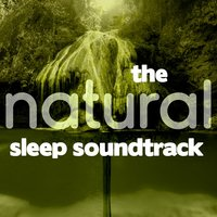 The Natural Sleep Soundtrack — Deep Sleep Nature Sounds