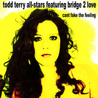 Can't Fake the Feeling — Todd Terry, Todd Terry All Stars, Bridget Barkan