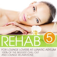 Rehab for Lounge Lovers At Lunatic Asylum, Vol. 5 — сборник