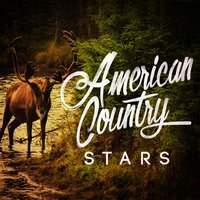 American Country Stars — Country Hit Superstars, New Country Collective, Top Country All-Stars, Country Hit Superstars|New Country Collective|Top Country All-Stars