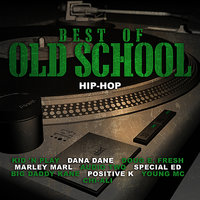 Best of Old School Hip-Hop — KRS One, Special Ed, Young MC, Big Daddy Kane, Audio Two, Marley Marl