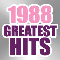 1988 Greatest Hits — The Magic Time Travelers