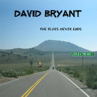The Blues Never Ends — David Bryant