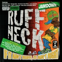 Ruff Neck - If It Ain't Ruff It Ain't Right — Various Artists - Jamdown Records