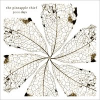 3000 Days — The Pineapple Thief