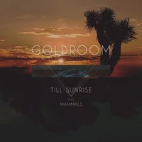 Till Sunrise (feat. Mammals) — Goldroom, Mammals
