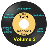 Twirl Records Story Volume 2 — сборник