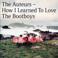 How I Learned To Love The Bootboys — The Auteurs