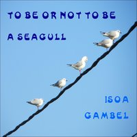 To Be or Not to Be a Seagull — Isoa Gambel