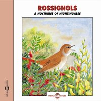 Rossignols - A Nocturne of Nightingales — Frémeaux Nature