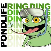 Ring Ding Ding — Pondlife feat. Froggy Frogspawn