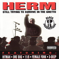 Still Trying to Survive in the Ghetto — Herm