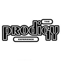 Experience — The Prodigy
