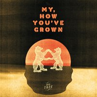 My, How You've Grown — Big Tree
