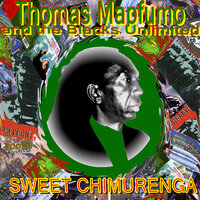 Sweet Chimurenga — Thomas Mapfumo