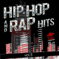 Hip-Hop and Rap Hits, Vol. 5 — The Hit Co.